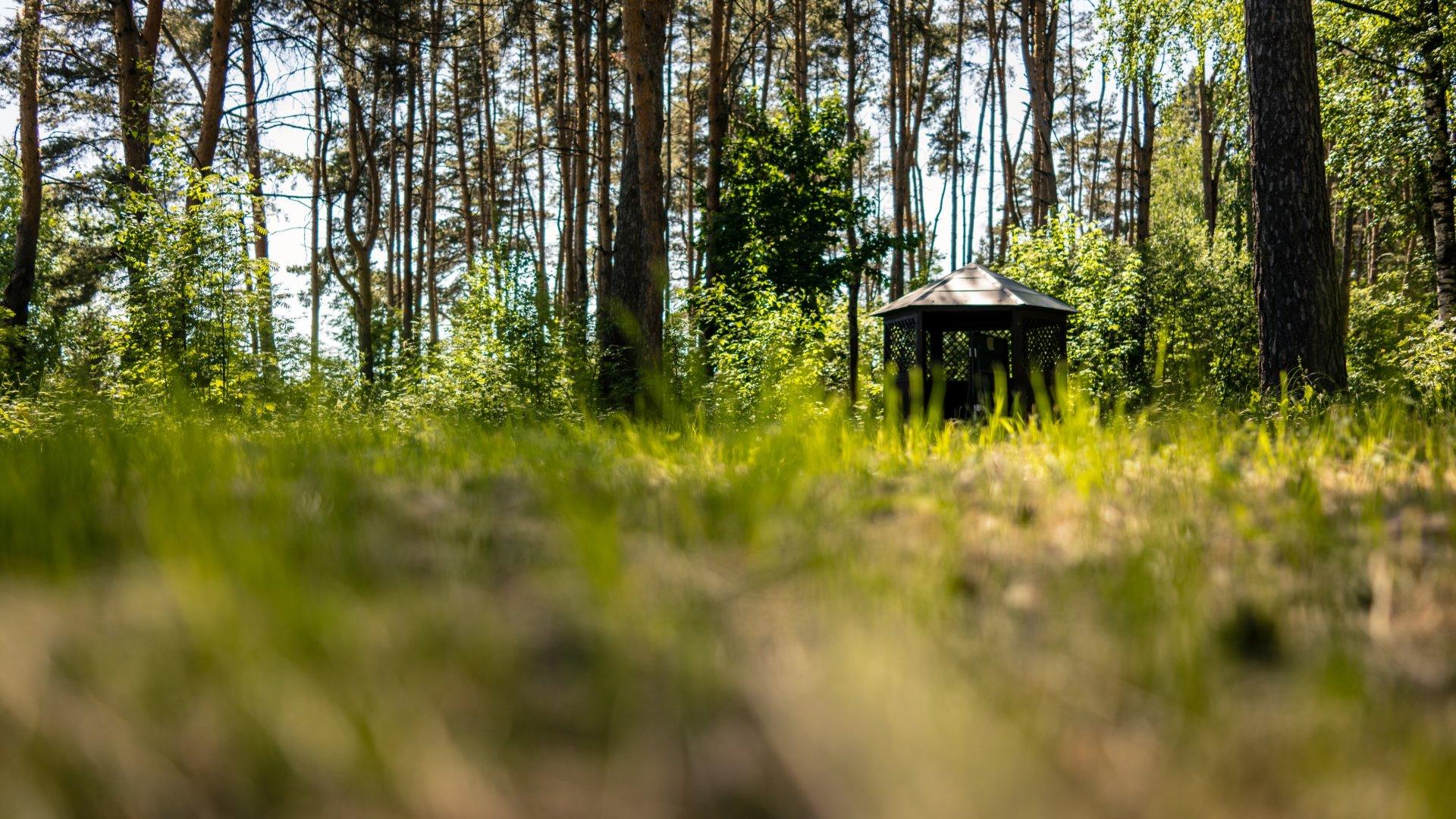 Ищите нас на сайте Комитета по туризму Московской области!
